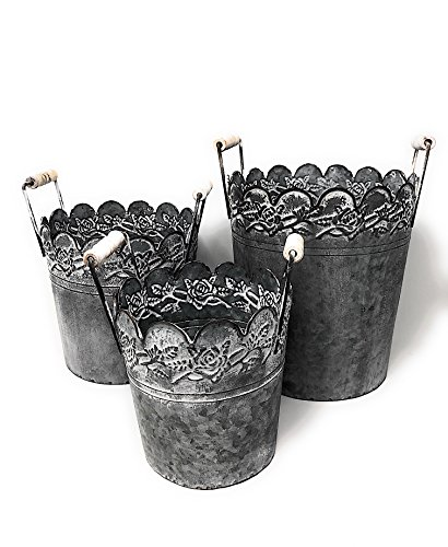 Set of 3 Galvanized Metal Bucket Container Organizer Planter for Flowers Succulent Air Decorative Tools Kitchen Distressed Indoor or Outdoor White Flower Roses