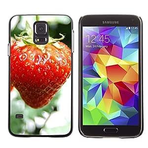 TopCaseStore / la caja del caucho duro de la cubierta de protección de la piel - Fruit Macro Wet Strawberry - Samsung Galaxy S5 SM-G900