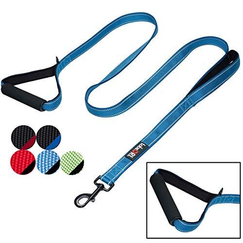 (tobeDRI Heavy Duty Dog Leash - 2 Padded Handles, 6 feet Long - Dog Training Walking Leashes for Medium Large Dogs (Blue))