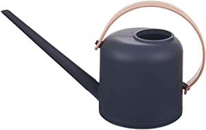 Gray Indoor Watering Can Used for Garden Plants Potted 1/2 Gallon Plastic Watering Can (Gray)
