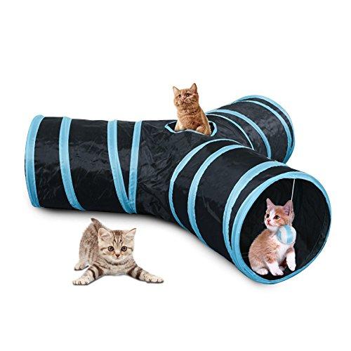 Cat Tunnel - 6