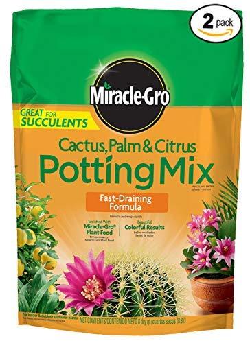 Miracle-Gro Cactus Palm and Citrus Potting Mix, 8-Quart,2-Pack (Best Soil For Citrus)