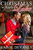 Christmas at Apple Lake: Second Chance Love (Apple Lake Series Book 1)