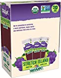 Stretch Island Grape Company Organic Fruit Strips, 0.49 Ounce (Pack of 120)