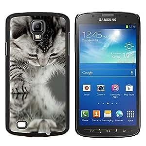 LECELL--Funda protectora / Cubierta / Piel For Samsung Galaxy S4 Active i9295 -- Americano de Pelo Corto Rizo Negro Blanco Gatito --