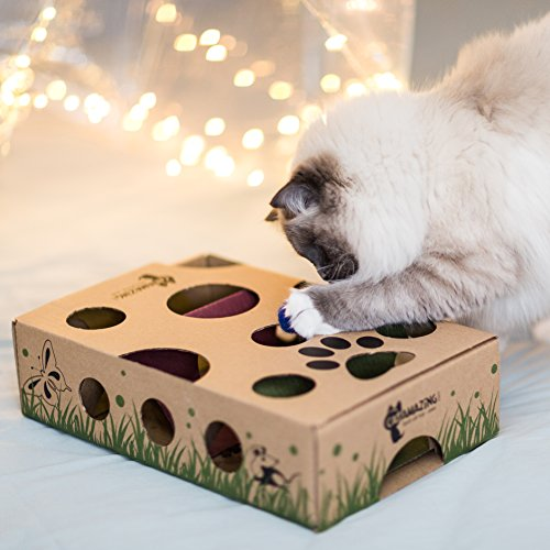 Cat Amazing – Best Cat Toy Ever! Interactive Treat Maze & Puzzle Feeder for Cats 4