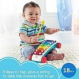 Fisher-Price Pull-Along Basics Gift Set 3 Infant