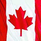 "Waving Canadian Flag Beverage Napkins Patriotic Party Disposable Tableware, 2-ply, Paper, 5"" x 5"", Pack of 30."