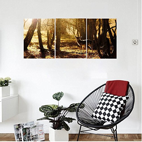 Liguo88 Custom canvas Cabin Decor Young Deer at Sunset in the Forest National Park Outdoors Netherlands Photo Wall Hanging for Bedroom Living Room Yellow Brown