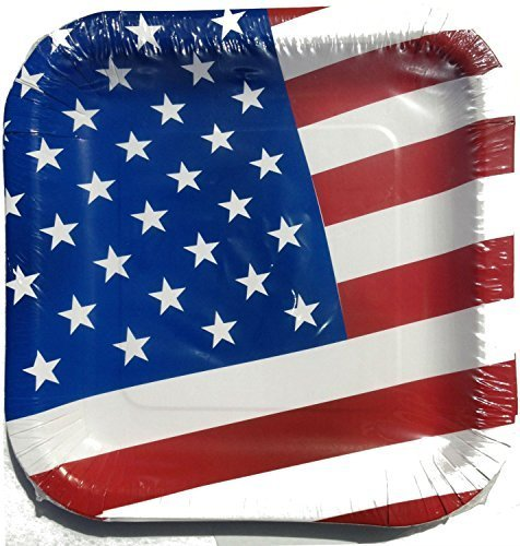 4th of July Patriotic American Flag Paper Plates, 14 Count (4 -