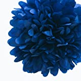 Dress My Cupcake Navy Blue Tissue Paper Pom Poms Party Kit, Set of 12 - Wedding Party Supplies, Wedding Shower Decorations