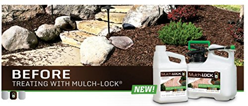 Mulch Lock 16001, Concentrate Refill, Pack of 1