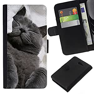 KLONGSHOP // Tirón de la caja Cartera de cuero con ranuras para tarjetas - Azul ruso Korat Gato Negro Felino - Sony Xperia M2 //