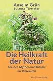 Die Heilkraft der Natur: Kräuter, Mythen und Rituale im Jahreskreis