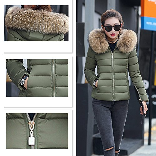 para Verde Abrigo Chaqueta 2017 Parka Mujer con Court Estola Elegante invierno Acolchada Capucha BAINASIQI el nqSAx6wS