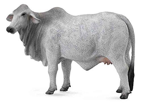 Collecta Brahman Cow