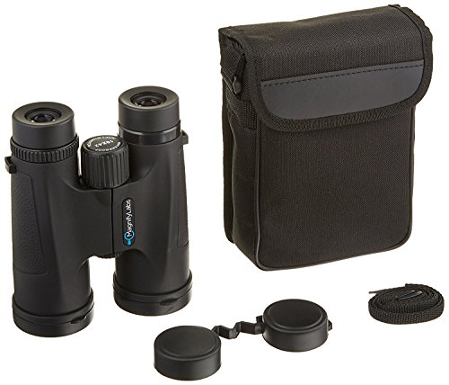 10x42 Bird Watching Binoculars - Fully Multi Coated - BAK4 Lenses and Just Right Grips - Carrying Case, Strap, Microfiber Cloth, and Protective Eye Cups - Just Lens