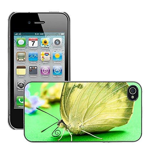 Bild Hart Handy Schwarz Schutz Case Cover Schale Etui // M00133733 Schmetterlings Insekten // Apple iPhone 4 4S 4G