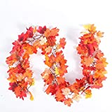 Rattan Christmas Wreaths and Garlands,Home Window Shopping Mall Xmas Festive Decoration Autumn Color Rattan