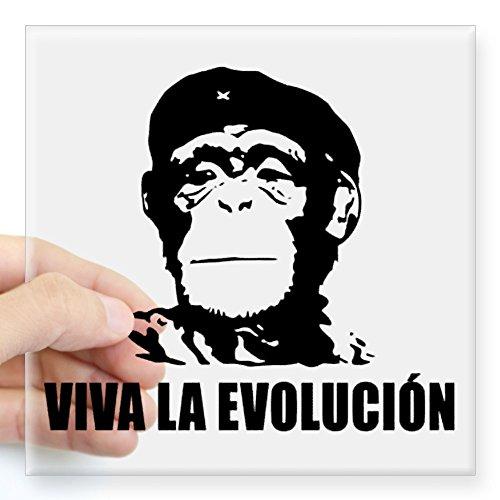 CafePress - Viva La Evolucion Square Sticker 3