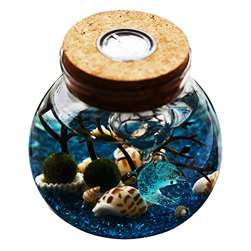 OMEM Multi Color Aquarium Set – Lifestyle Moss Balls, Algae, Gravel, Doll, Workbench Decor ...