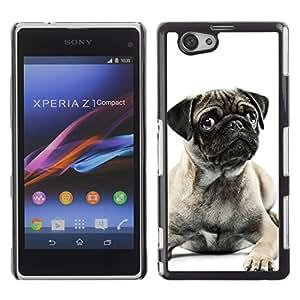 YiPhone /// Prima de resorte delgada de la cubierta del caso de Shell Armor - Pug Black White Puppy Cute Button Ear - Sony Xperia Z1 Compact D5503