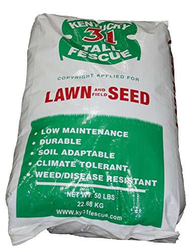 Kentucky 31 Tall Fescue - The Dirty Gardener Kentucky 31 Tall Fescue Grass Seed - 50 Pounds