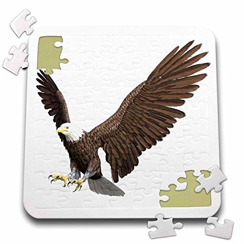 Birds Boehm Game (Boehm Graphics Bird - Bald Eagle Landing - 10x10 Inch Puzzle (pzl_253968_2))