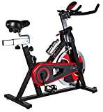 CrystalTec Indoor Aerobic Training Exercise Bike / Cycle -...