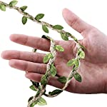 Supla-2-Rolls-100-Long-Fake-Green-Leaves-Ivy-Leaves-Artificial-Greenery-Vines-Hanging-Leaf-Foliage-Vine-Hemp-Rope-Green-Leaves-Ribbon-Green-Leaf-Trims-Green-Leaf-Vine-Ribbon-for-Scrapbooking