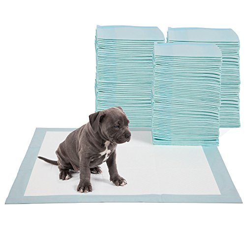 Training Potty Pads Dogs Cats product image