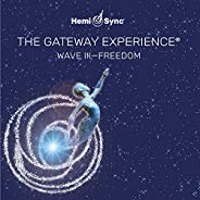 Gateway Experience: Freedom-wave 3