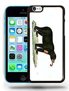 Bear Sketch Drawing Art Phone Case Cover Designs for iPhone 5C