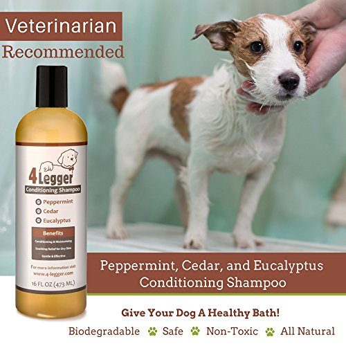 Import Dog Shampoo To Australia