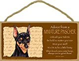 """(SJT67547) Advice from a Miniature Pinscher (Min Pin) 5"""" x 10"""" MDF Wood Plaque Sign licensed from Your True Nature"""