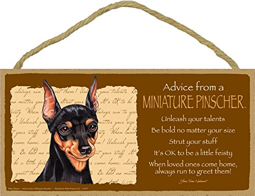 (SJT ENTERPRISES, INC. Advice from a Miniature Pinscher (Min Pin) 5