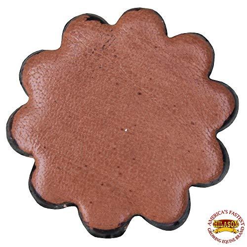 HILASON Set of 06 Plain Scalloped Leather Rosette Concho Saddle TACK TAN 1-1/4