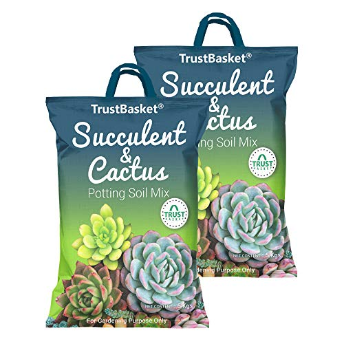 TrustBasket Succulent and Cactus Potting Soil Mix – 10 KG