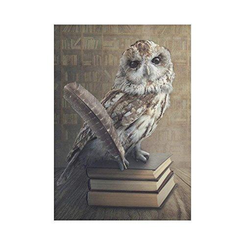 WAZZIT Wise Owl Vintage Books Shelf Polyester Garden Flag 28