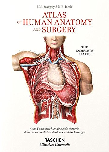 Download bourgery atlas of human anatomy and surgery read epub by download bourgery atlas of human anatomy and surgery read epub by jean marie le minor fandeluxe Images