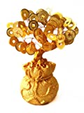 Feng Shui Money Tree Bonsai with Chinese