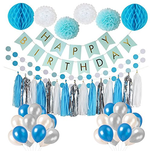 Litaus Frozen Theme White and Blue Party Decorations for Girls, Balloons, Pom Poms Flowers, Birthday Banner, Paper Garland, Tassels for 1st Birthday Girl Decorations Kids Birthday