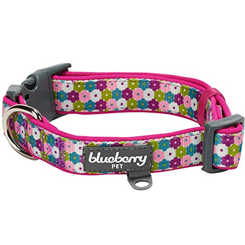 Blueberry Pet 6 Patterns Soft & Comfy Endless Floral Print Designer Padded Dog Collar, Medium, Neck 14.5