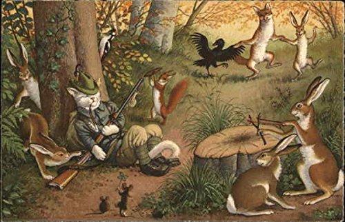 Cat Hunter Resting in Forest Dressed Animals Original Vintage Postcard from CardCow Vintage Postcards