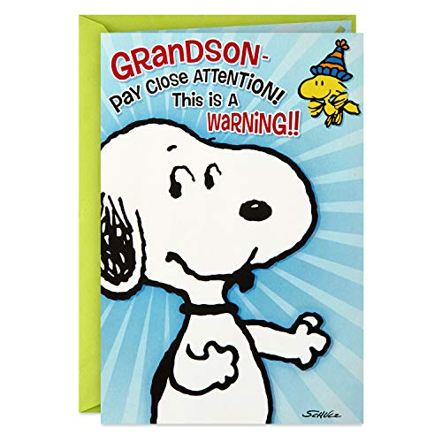 Hallmark Peanuts Pop Up Birthday Card for Grandson
