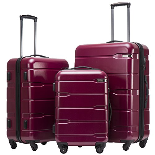 Coolife Luggage Expandable 3 Piece Sets PC+ABS Spinner Suitcase 20 inch 24 inch 28 inch (Radiant Pink new)