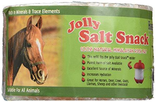 Jolly Stall Snack Refill Salt -