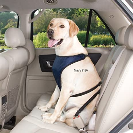 Guardian Gear Polyester Ride Right Dog Car Harness X