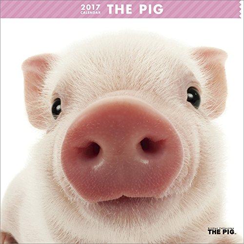 THE PIG Wall Calendar 2017