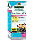 Nature's Answer Bioavailable Sambucus Kids Formula | 4-Fluid Ounces | Kosher Certified Organic Elderberry Syrup | Great Taste & Gluten-Free | Dietary Supplement | No Artificial Preservatives Review